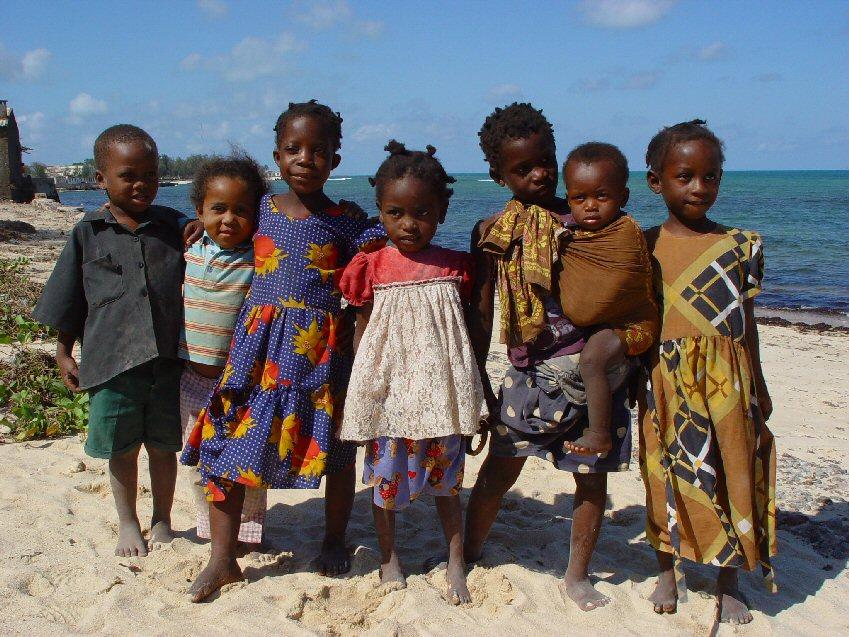 Safari Afrique Mozambique