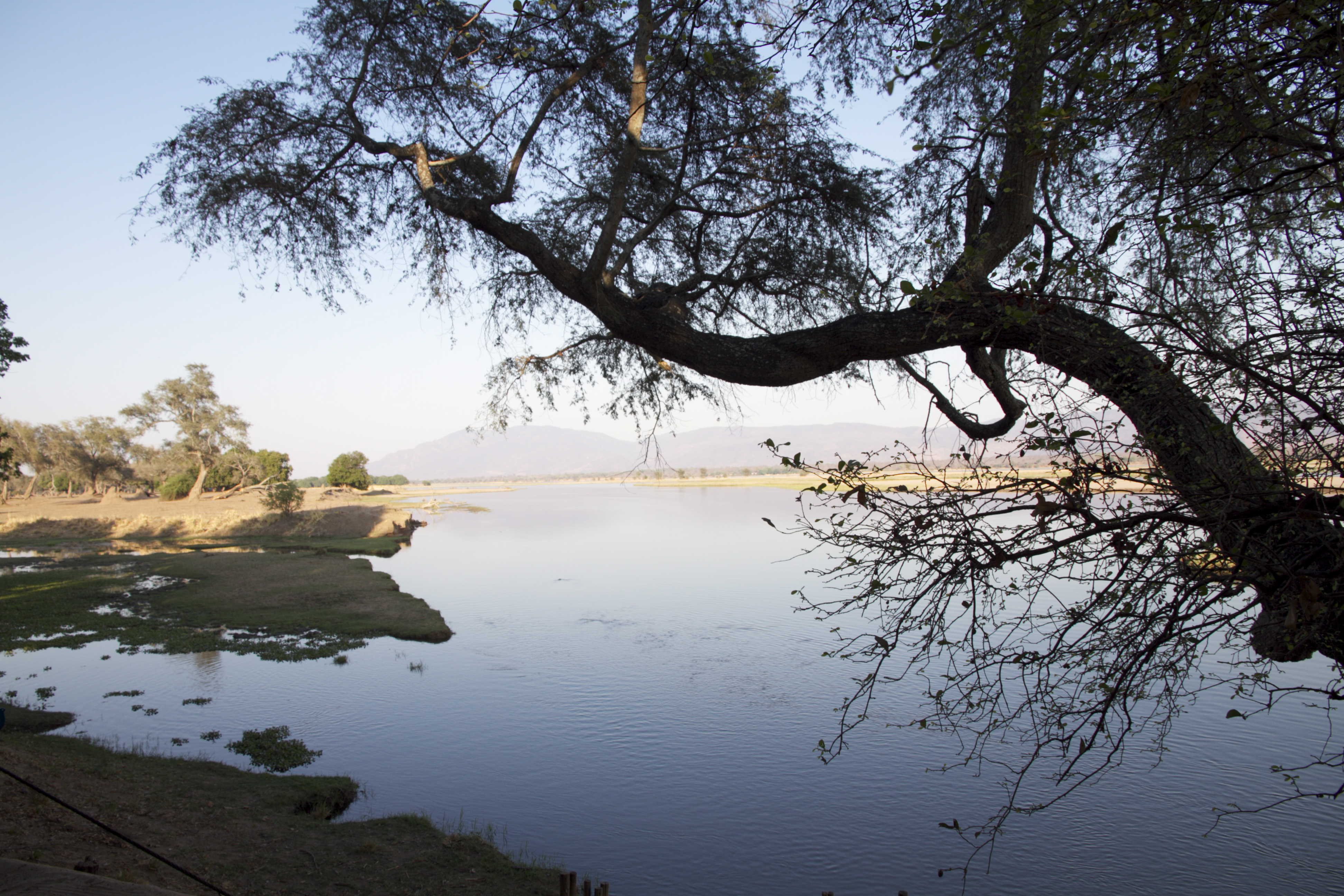 Le mythique Zambèze, photo Christian Dero, Zimbabwe, Mana Pools